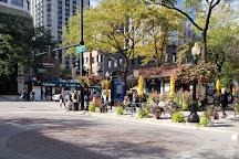 Mariano Plaza, Chicago, United States