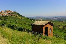 Strada del Barolo e Grandi Vini di Langa, Castiglione Falletto, Italy