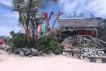 Lagoonarium, Moorea, French Polynesia