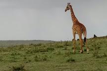 Explore Africa Holidays Safaris, Nairobi, Kenya