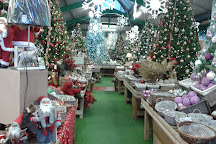 Ackworths Garden Centre, Pontefract, United Kingdom