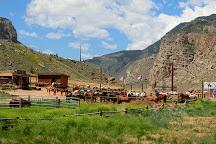 Cedar Mountain Trail Rides, Cody, United States