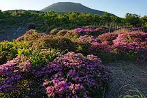 Mt. Nakadake, Kirishima, Japan
