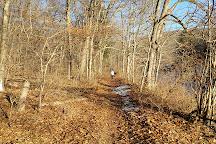 Kent Falls State Park, Kent, United States