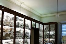 Museo di Storia Naturale dell'Accademia dei Fisiocritici, Siena, Italy