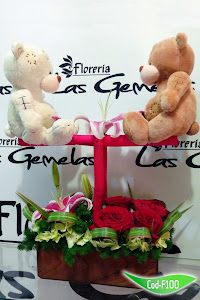 FLORERIA LAS GEMELAS 2
