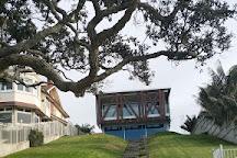 Habitat Tours, Auckland, New Zealand