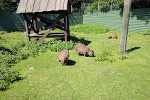 Blaavand Zoo, Blaavand, Denmark