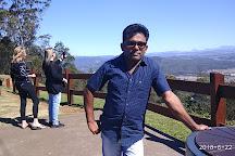 Tamborine Mountain, Gold Coast, Australia
