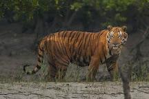 Sundarban Nature Club, Sundarban, India