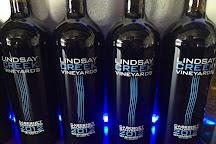 Lindsay Creek Vineyards, Lewiston, United States