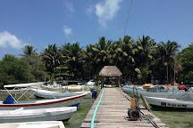 Buceo Xtabay, Puerto Morelos, Mexico