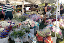 Marco Island Farmers Market-Wednesday, Marco Island, United States