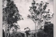 Delamere Vineyards, Pipers Brook, Australia
