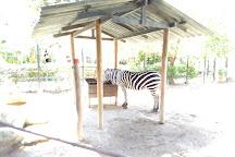 Zoologico de Barranquilla, Barranquilla, Colombia