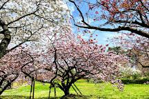 Matsumae Park, Matsumae-cho, Japan