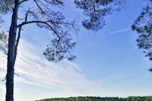 Cikat Forest Park, Mali Losinj, Croatia