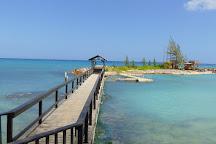 Dolphin Cove Ocho Rios, Ocho Rios, Jamaica