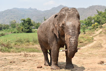 Happy Elephant Home, Mae Taeng, Thailand