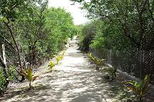Anse de Grande Saline, St. Barthelemy