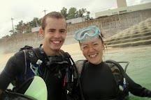 Piranha Divers Okinawa, Onna-son, Japan