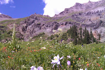 Alpine Scenic Tours, Ouray, United States