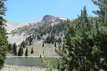 Teresa Lake, Great Basin National Park, United States