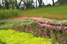 Fujimori Park, Hachioji, Japan