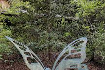 Cedar Creek Gallery & Pottery, Creedmoor, United States