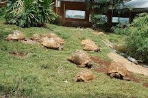 Nairobi National Museum, Nairobi, Kenya