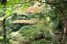 Gyokusen-immaru Garden, Kanazawa, Japan