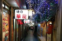 Ganso Sapporo Ramen Street, Sapporo, Japan