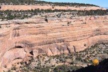 Colorado National Monument, Fruita, United States