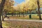 Araucano Park