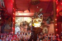 Madam's Organ Blues Bar, Washington DC, United States