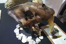Museo de la Prehistoria Parque Dos Ojos, Tulum, Mexico