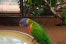12 Mile Bird Park, Broome, Australia