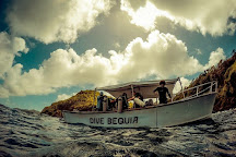 Dive Bequia, Bequia, St. Vincent and the Grenadines