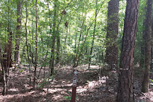 Lynch's Wood Park, Newberry, United States