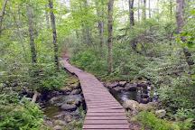Weetamoo Woods & Pardon Gray Preserve, Tiverton, United States