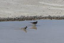 Searles Dry Lake, Trona, United States