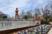 The Johns Hopkins University, Baltimore, United States
