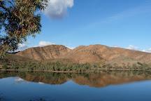 Aroona Dam Sanctuary, Leigh Creek, Australia