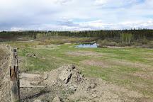 Weaselhead Flats, Calgary, Canada