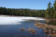 Bat Lake Trail, Algonquin Provincial Park, Canada