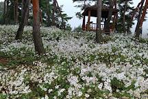 Okjeongho Gujeolcho Theme Park, Jeongeup, South Korea