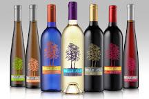 Belle Joli Winery Tasting Room, Deadwood, United States