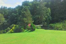 Arboretum Borova Hora, Zvolen, Slovakia