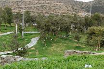 Raghadan Forest Park, Al Bahah, Saudi Arabia