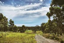 Cattai Wetlands, Coopernook, Australia